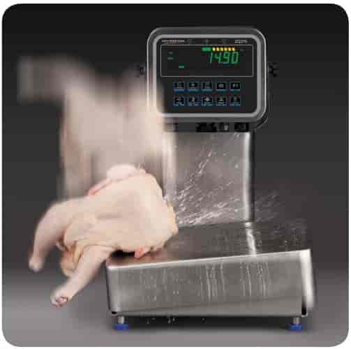 waterproof industrial weighing scale